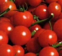 Consiglio comunale sulla crisi dell'agricoltura, giorno 12 a Donnalucata.