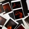 Les panthères rouges: le foto di Andreu Rverter Sancho