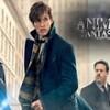 Animali fantastici 2- I crimini di Grindelwald al Cinema Italia.