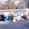 Rifiuti, se vogliamo la città pulita, dobbiamo differenziare meglio l'umido
