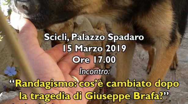 """""""#Randagismo: cosa è cambiato dopo la tragedia di Giuseppe Brafa?"""" Convegno Venerdì 15 marzo a Palazzo Spadaro a Scicli."""